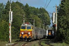 EP09-046 (pedro4d) Tags: ep09 ep09046 suchy las pkp intercity kolej pocig train zug railway nikon coolpix p900
