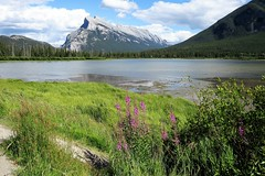 At Vermilion Lakes (Patricia Henschen) Tags: vermilionlakes vermilion lakes banff alberta canada banffnationalpark national park canadian rockies northern mountains lake clouds rocky mountrundle drive roadside larch trees