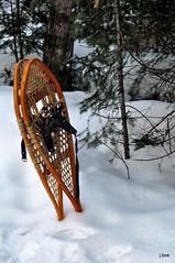 DSC_0188 - 2016.03.11 - Ready To Go (j. boe) Tags: snowshoes snow winter nikon d90