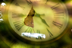 Time  is Everything (Rebeak) Tags: lightroompresets overlay raw clock leaf numbers reflections time learning rebeak