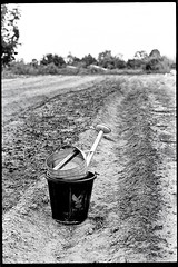 "Watering Can Bucket Field (Sailing ""Footprints: Real to Reel"" (Ronn ashore)) Tags: fields rural can water dry isan thailand agriculture nikkormatft3 trix blackandwhite 35mmphotography nikon 50mmf14"