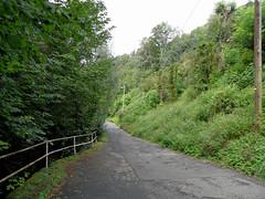 Koblenz - Blindtal (onnola) Tags: sommer summer grn green strase road strauch baum tree shrub gelnder railing ehrenbreitstein koblenz rheinlandpfalz deutschland rhinelandpalatinate germany blindtal