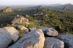 PWS02208 (paulshaffner) Tags: dorobo safaris tanzania soit orgoss loliondo dorobosafaris safari education abroad studyabroad penn state pennstate biology pennstatebiology