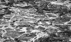 Hexagonal Patterns of Salt (Black & White, Death Valley National Park) (thor_mark ) Tags: 86meters282ftbelowsealevel badwaterbasin belowsealevel blackwhite capturenx2edited colorefexpro day3 deathvalley deathvalleynationalpark desertlandscape hexagonalsaucers lookingnorth lowestelevationinnorthamerica nature nikond800e project365 salt saltflat triptodeathvalleyandcalifornia california unitedstates