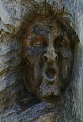 Der Hexenstein (steffi's) Tags: holz holzskulptur anitainderbitzin skulpturenweg isenthal sage hexenstein