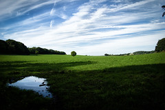 Cheshire Fields (jamesromanl17) Tags: landscape landscapes england field fields cheshire countryside clouds cloud sky skies