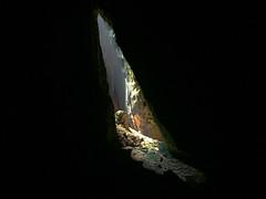 IMG_1169 (oowhatsthatdoo) Tags: kualalumpur kl nature monkey temple steps cave light shadow