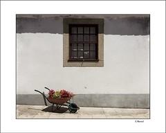 Algarve (tmuriel67) Tags: algarve portugal streetphotography summertime