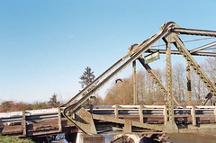 Spencer Island Bridge (Anne Abscission) Tags: everett washington langusriverfrontpark spencerisland pacificnorthwest hiking trails nature spring bridge unionslough slough wetlands olympusmjuzoom105 olympus mju kodakgold 200asa kodakgold200 filmphotography 35mm 35mmfilm film analog trees barebranches bird bluesky goose