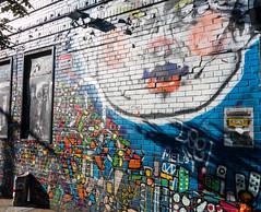 Face (UrbanphotoZ) Tags: face lips round plump trump streetart urbanart aerosol billywests bar wall warning securitycamerainuse can melo skull colorful shapes small candies chelsea westside manhattan newyorkcity newyork nyc ny