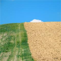 reality by surprise (gicol) Tags: monte collina hill grass soil terra prato cielo sky nature naturaleza nuvola cloud landscape paesaggio puglia apulia italy pietramontecorvino lucera fg italia