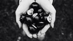 Chestnuts (antonverein) Tags: chestnut autumn monochrome