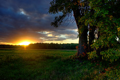 Crpuscule (MarcantoineBolduc) Tags: ciel sun soleil cloud sunset couch outside paysage landscape nature foret arbre forest tree green countryside bright exposure cielo natur