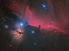 Horsehead and Flame Nebulae (Terry Hancock www.downunderobservatory.com) Tags: camera sky monochrome night stars photography mono pier back backyard fotografie photos 33 thomas space shed science images astro apo m observatory telescope nebula astrophotography barnard a