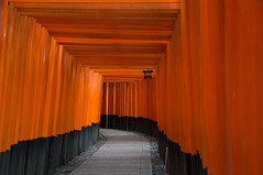 How many torri? 2 (Kit Carruthers) Tags: red japan kyoto gate torri fushimiinaritaisha november2012