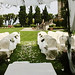 villa_wedding_tuscany