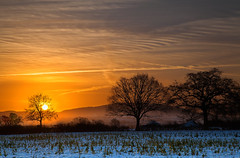 Melting Away (Natasha Bridges) Tags: morning trees winter snow sunrise countryside melting shropshire fields risingsun wrekin