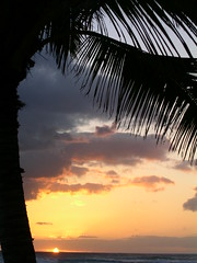 Hawaiian Sunset (Solosintigo) Tags: sunset sun beach beauty silhouette hawaii paradise horizon silhouettes sunsets hawaiibeach sunsetatthebeach hawaiisunset beyondthehorizon sunsetsandsilhouettes hawaiisite bluebeachesofhawaii