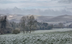 Alton Barnes White Horse across the frosty fields (lovestruck.) Tags: county uk trees winter england white cold ice weather rural landscape countryside frost view sony hill fields hillside wiltshire whitehorse milkhill valeofpewsey honeystreet 2013 rx100 challengeyouwinner