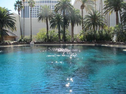 Thumbnail from Secret Garden & Dolphin Habitat