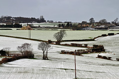 A dusting of snow (littlestschnauzer) Tags: uk trees white snow west rural landscape countryside nikon shadows village view sheep farmers farm yorkshire scenic farmland fields hay bales snowfall dusting emley 2013 d5000 elementsorganizer11 hegrerows