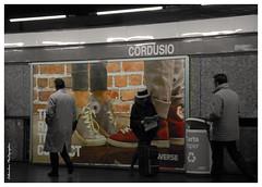 Cordusio (Edbumbum) Tags: nikon musictomyeyes nikond80 artofimages flickraward chariotsofartistslevel1 rememberthatmomentlevel1 edbumbum