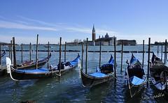 Blu.............................. Venezia....mitica Venezia !!!! (marina bertone) Tags: marina mare barche cielo laguna acqua inverno carnevale venezia gabbiani piazzasanmarco febbraio gondole nuvoletta nikond90 basilicadisangiorgiomaggiore marinablu