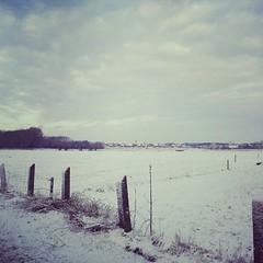 Walk from heiloo to egmond aan zee (2012newborn) Tags: winter snow square squareformat amaro winterinholland iphoneography instagramapp uploaded:by=instagram