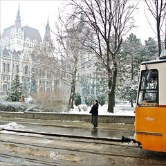 Waiting in the snow..... (Frank van de Loo) Tags: schnee winter red snow cold rot ice gelo umbrella rouge vinter rojo hungary hiver nieve sneeuw budapest housesofparliament tram parliament vermelho neve streetphoto invierno neige parlament streetcar eis inverno rood rosso paraguas tramway snö ungarn fresco froid hielo hungria paraplu glace ombrello parapluie kou streetshot ijs ghiaccio pcc ungheria hungría tramcar kälte röd guardachuva tranvía regenschirm boedapest paraply schirm hongarije hongrie orszaghaz streetpicture streetpic pépin strasenbahn dsc0906 parlementsgebouwen pleasenonotesonmypictures