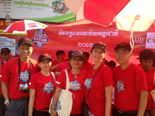 Cambodia ICD 2013
