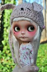 49/365 I Caught a bun bun (Lawdeda ) Tags: pink bunny beautiful doll day dress little helmet adorable jardin h anemone 49 blythe 365 february truly custom 18 bun meimei patience fbl adad 2013 a 49365 adolladay