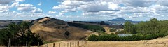 Beautiful views (Miss Basil85) Tags: newzealand panorama landscape scenery northisland taupo acaciabay blinkagain bestofblinkwinners blinksuperstars