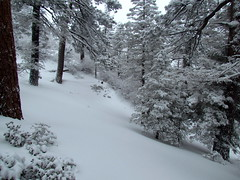 Bear Mountain 2-20-13 (Big Bear Mountain Resorts) Tags: bear white snow ski ride powder bearmountain snowboard pow bigbearlake freshsnow newsnow freshpowder