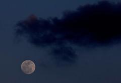 La Luna de la nieve / Snow Moon (Jos Rambaud) Tags: sky cloud moon luna cielo nube snowmoon