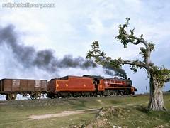 M001-00782.jpg (Colin Garratt) Tags: india tree train smoke railway front steam cutting locomotive vulcan bengal 462 bolpur prantik pacifics burdwan no22224