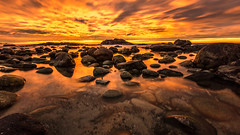 Gold Rush... (Minkn) Tags: world winter sea sky cloud seascape color beach nature water beautiful norway clouds walking spectacular landscape gold seaside scenery perfect long exposure heaven skies colours seascapes earth sony great natur norwegian scenary rush stunning arne gras per seashore heavenly gul perarne tare rogaland landskap blger seawater naturesfinest egersund blge scenicsnotjustlandscapes minkn slta55v slta55