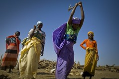 International Womens Day 2013 (UNHCR) Tags: africa women chad firewood treguine sudaneserefugees ouaddairegion