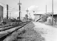 Seaboard Coast Line TN Tower is seen in a view to the north along the former SAL mainline, where it crosses the former ACL diamonds in Tampa, Florida, mid 1970's - 1 (alcomike43) Tags: old city railroad blackandwhite bw tower classic vintage ties switch photo bars angle tracks trains historic diamond negative amtrak photograph rails freighttrains spikes sal acl ballast rightofway scl turnout mainline tampaflorida telegraphpoles seaboardcoastline passengertrains roadbed tntower atlanticcoastline seaboardairline tieplates automatedswitchmachine diamondprotectionblocksignal conventionaljointedsectionrails localfreighttrains blocksigna semaphorebladeblocksignal