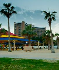 Farewell Khobar ( l-) Tags: city sunset sky building playground palms hotel palm meridian khobar    juaid