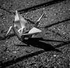 Origami Crane On Bricks