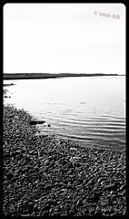 Lake (arnthorr) Tags: arnthorr ar arnrragnarsson arnr skagafjrur norurland northiceland iceland fr fjlskyldan