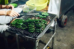 P1013362 (ekiny) Tags: vietnam saigon dolma
