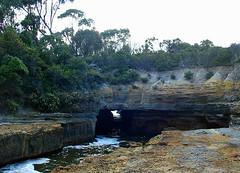 blowhole - tasman peninsular, tasmania, australia (Russell Scott Images) Tags: tasmanpeninsula tasmania australia blowhole