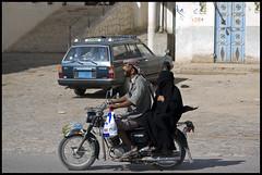 DSC_6500 (Sgaffo) Tags: yemen travelling 20072008 socotra