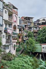 The Village (gullevek) Tags: building fuji fujixt1 fujinonxf1855mmf28f4rlmois shifen taiwan 十分 台湾 建物 newtaipeicity tw village 村 plants 草木