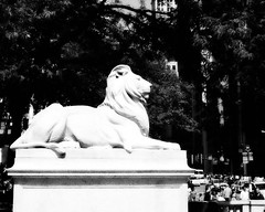Lion (LilacPOP) Tags: nyc newyork timesquare moma museumofmodernart guggenheim subway magritte fineart gallery lights city urban bigapple etsy jannacoumoundouros lilacpopstudio lilacpop