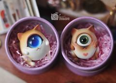 shdp05 () Tags: cyclops kitties