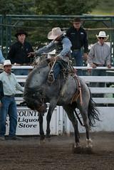 Tak_CPRA_2016-5180 (takahashi.blair) Tags: coachtak rodeo blairtakahashitakahashiblaircoachtakblairtakahashi pincher creek barrel racing bronc rope bareback steer bullriding