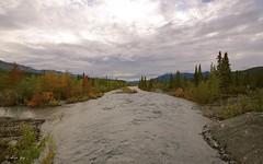 Fall colors in Alaska (Shijo and Pooja Photography) Tags: landscape fall alaska glacierview matanuska nikon d610