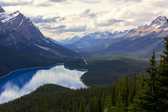 Lake fucking blue Peyto (Felix Ermert) Tags: kanada canada alberta banff national park canon eos 60d roadtrip lake peyto forest water sky clouds mountains amazing blue trans highway